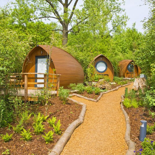 The woodland garden in the Glamping resort Bliesgau biosphaere