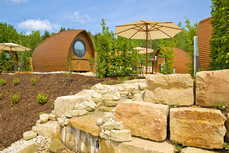 The Vineyard of the Glamping resort Bliesgau biosphere